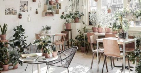 Một số bí kíp để có thể thiết kế quán cà phê có diện tích nhỏ đẹp