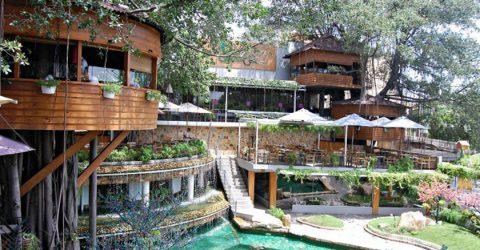 Phân chia không gian quán cafe sân vườn như thế nào cho đẹp ?